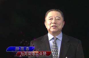 胡葆森:建业地产股份有限公司执行董事