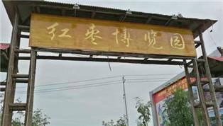 好想你红枣文化节将开幕 枣香满园等你来
