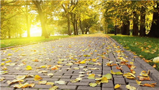 出伏天气变凉 秋季养生有6个误区