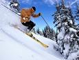 相聚伏牛山滑雪度假乐园 春节不打烊欢乐吉祥中国年