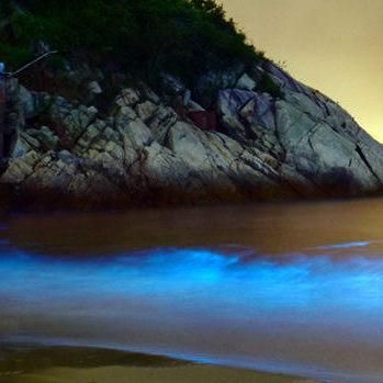 深圳:海域现荧光海 专家称系夜光藻赤潮