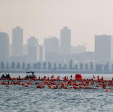武汉水上马拉松赛东湖逐浪
