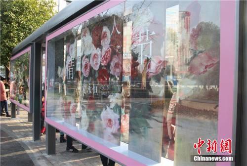 """宁波""""最浪漫""""公交车站亮相街头"""