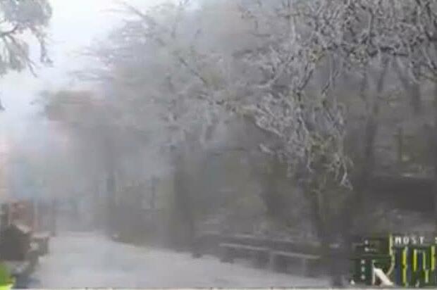 快穿上秋裤吧 河南都下雪了