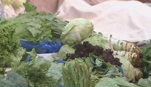立秋节气说防暑 应季蔬菜巧选择