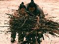 微电影——古代二十四孝之芦衣顺母
