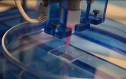 全球首创3D生物血管打印机问世