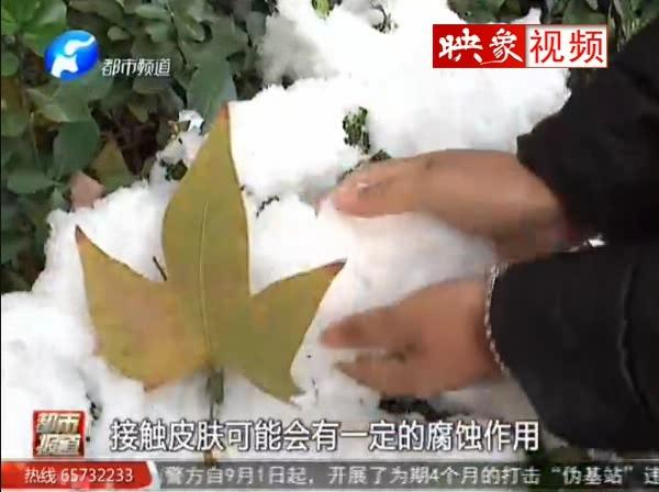 雪里有毒 是真的吗