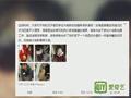 吴镇宇首度公开回应 因费曼伤情缺席大电影拍摄.mp4