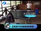 这就是乒乓球是国球的原因-打渔晒网